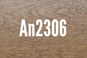 An2306