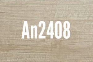 An2408
