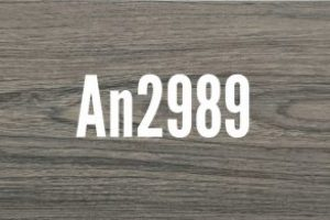 An2989